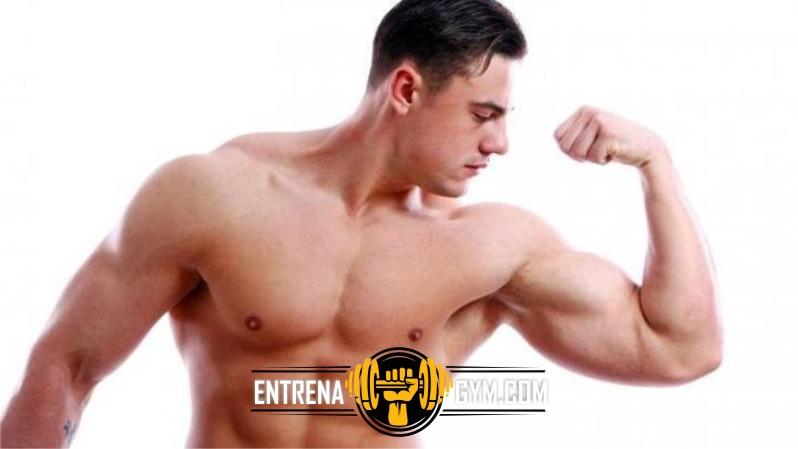 rutina de biceps en gimnasio